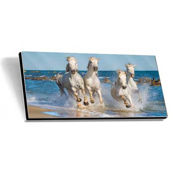 GalleryPrint High-Gloss auf Alu-Dibond 45 x 140 cm