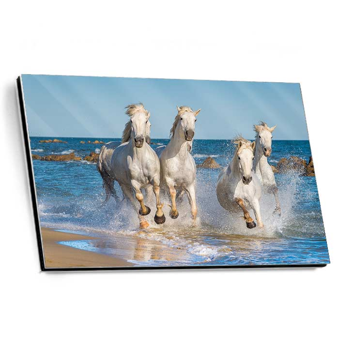 Alu-Dibond Gallery Print high gloss Handy-Format